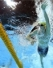 Anti Wave equipment selected for 2018 Commonwealth Games venue