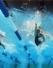 Myrtha Pools - worthy of the Olympics!