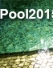 iPool2015: the 1st International Pool Competition on the Internet