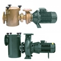 FDN cast iron swimming pool pumps