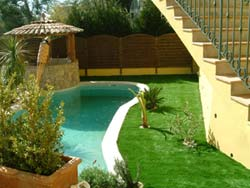 garden grass gazon piscine