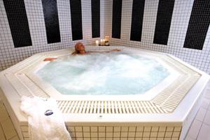le blog des professionnels de la piscine et du spa septembre 2010. Black Bedroom Furniture Sets. Home Design Ideas